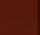 Big Brother 9 (US)