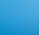 Big Brother 10 (US)