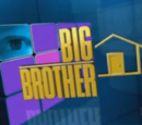 Big Brother 12 (US)