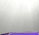 Big Brother 14 (US)