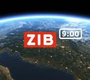 ZIB 9:00