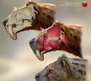 Млекопитающие Северной Америки