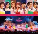 Berryz Koubou Debut 10shuunen Kinen Concert Tour 2014 Aki ~Professional~