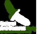 LogoNAP.png