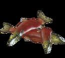 Salmon Food (Zoker)