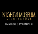 Night At The Museum Wiki