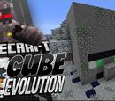 Cube Evolution