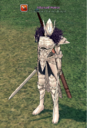 Chronicler (Paladin Dual Swords).png