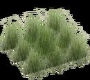 Grassland Grasses (JimmyzHoopz)