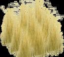 Savannah Grasses (JimmyzHoopz)