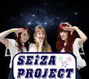 Seiza Project