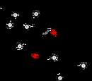 1961 Rand Grand Prix