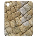 Mat-fossil.png
