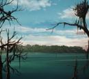 Wyspa Widmor