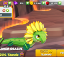 Sonnenblumendrache