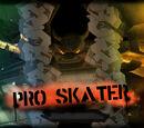 Pro Skater (level)