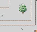 Rogue Camp Hotspots
