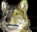 Stwórz wilka