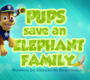 Pups Save an Elephant Family's Pages