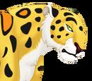 Sabor, el leopardo