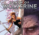 A Morte do Wolverine Vol 1 3