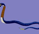 Ribe Curse