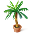 Asset Palm Trees.png