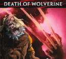 A Morte do Wolverine: O Legado de Logan Vol 1 3