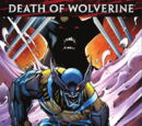 A Morte do Wolverine: O Legado de Logan Vol 1 5