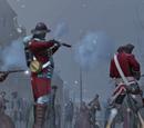 美国独立战争