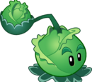 Cabbage-pult