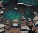 Džicu multi-klona senke