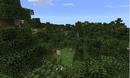 Bosque de abedules cubriendo un gran terreno..png