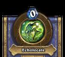 Echolocate (heroic)