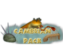 Cambrian Pack (Bunyupy)