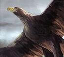 Free Folk's Eagle