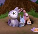 Bunnies/Trivia