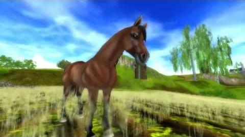 Star Stable - Brand New Horse, Brand New Animations!