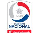 Campeonato Nacional Scotiabank