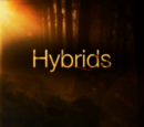 List of Hybrids