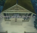 Cammy and the Bachelor