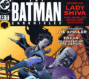 Batman Chronicles (22)