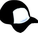 Sleetcp/Black Ball Cap