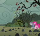 Pinkie's Rock Farm