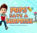 Pups Save a Surprise