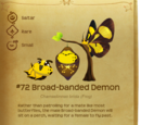 Broad-banded Demon