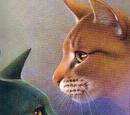 Gatos de la Tribu de las Aguas Rápidas