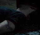 Julian (Season Five)