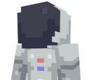 Gravity (2015 minigame)