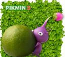 Pikmin Viola